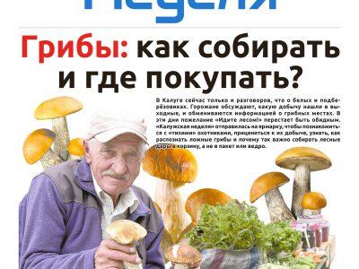 Газета «Калужская неделя» №28 от 18 июля 2019 года