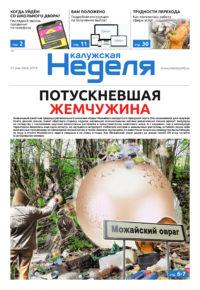 Газета «Калужская неделя» № 19 от 21 мая 2020 года